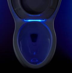 Kohler's new nightlight toilet seat